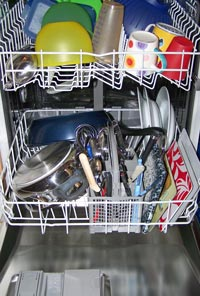 Potentially pathogenic fungi able to grow in dishwashers